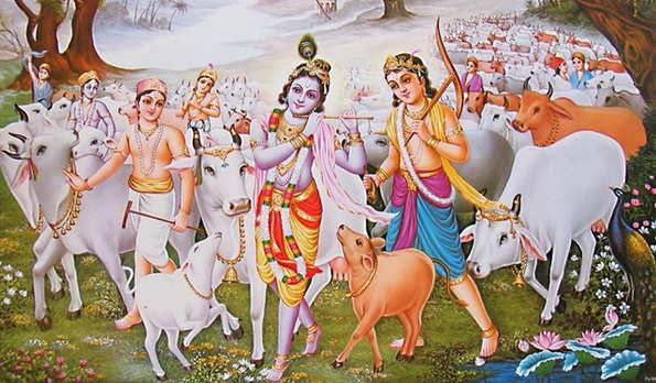 Sri Shyam Gaushala